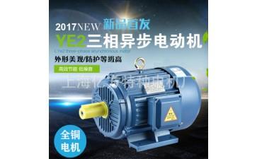 三相异步电动机_y315l1-4 三相异步电动机 立式卧式电机-- 上海亿方特种电机厂