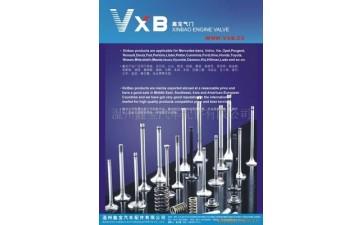 系列各种气门_VXB鑫宝气门适用,欧美日韩系列各种气门-- 温州鑫宝汽车配件有限公司