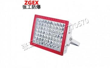 BLD系列粉尘防爆免维护LED节能灯-- 乐清市张工防爆电器有限公司