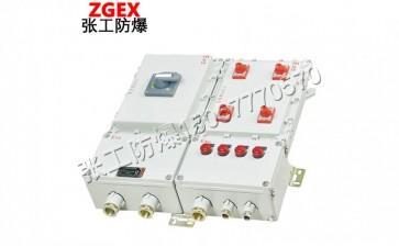 BXX/BXS系列粉尘防爆检修电源插座箱-- 乐清市张工防爆电器有限公司