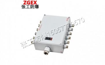 BJX系列粉尘防爆接线箱(IIB、IIC)-- 乐清市张工防爆电器有限公司